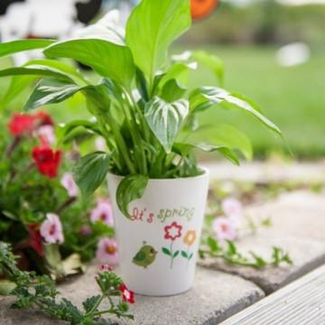 Ceramic, Flowerpot,...